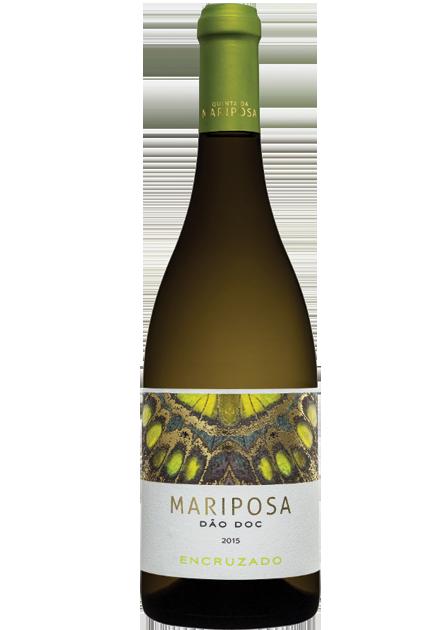 Mariposa 'Encruzado'